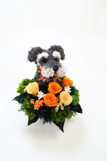 プリザーブドフラワー犬