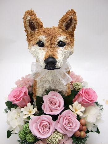 柴犬の花ギフト
