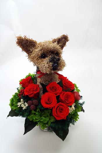 還暦祝い 犬花