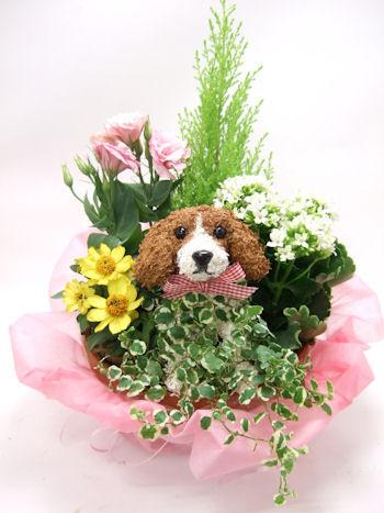 ビーグル犬のトピアリー寄せ植え