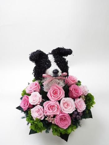 プリザーブドフラワー犬 ボーダーコリー