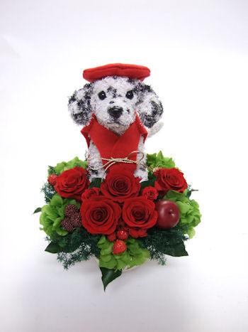 還暦祝い 愛犬家