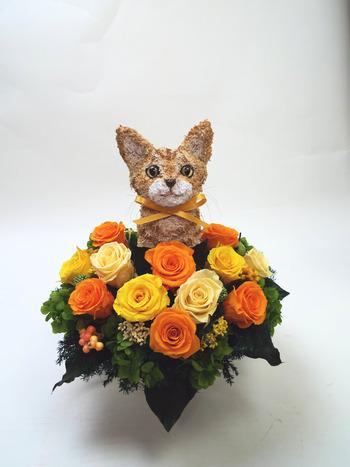 動物病院開院祝い 猫花