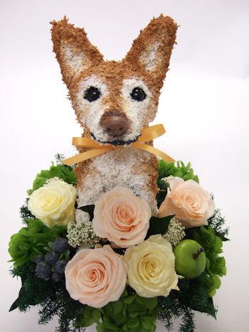 両親結婚記念日 犬