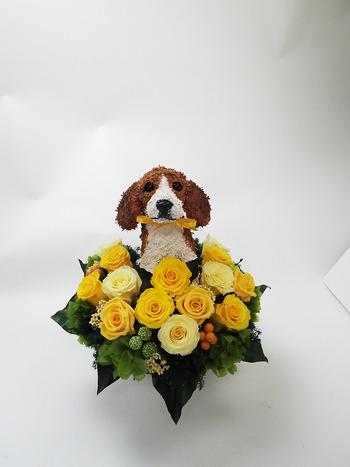ビーグル犬のプリザーブドフラワー