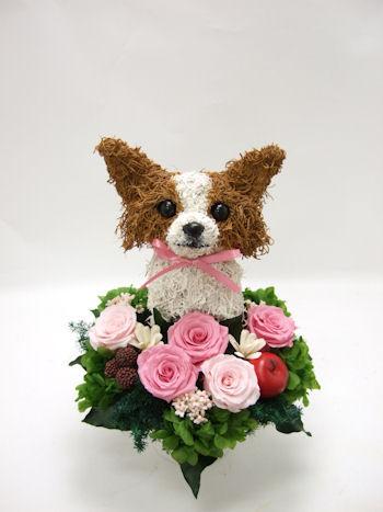 犬好き誕生日プレゼント