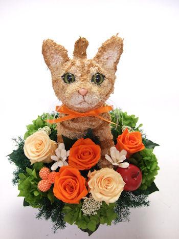 トラ猫のトピアリープリザーブドフラワーアレンジ