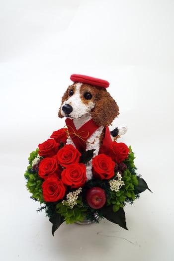 犬好き 還暦祝い