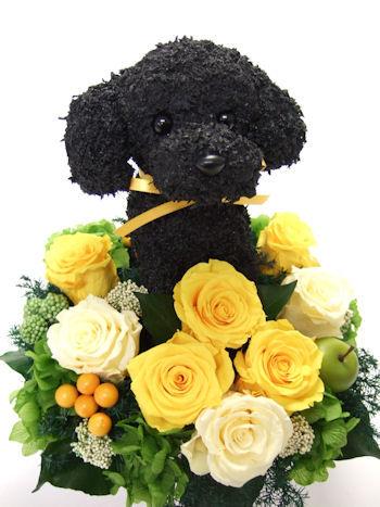 愛犬家プレゼント