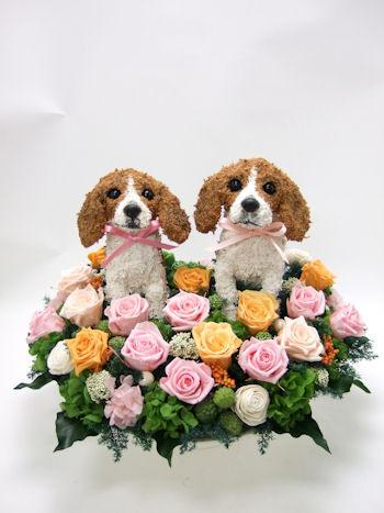 結婚式犬のウェルカムドール