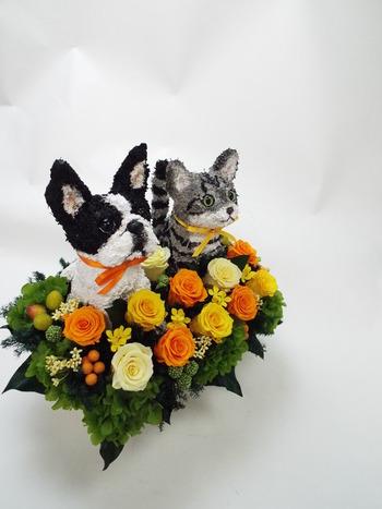 犬 猫 花