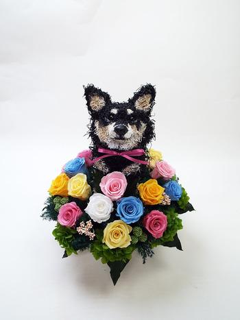 愛犬オーダーメイド