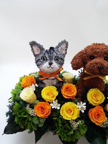 プリザーブドフラワーアレンジ 犬と猫