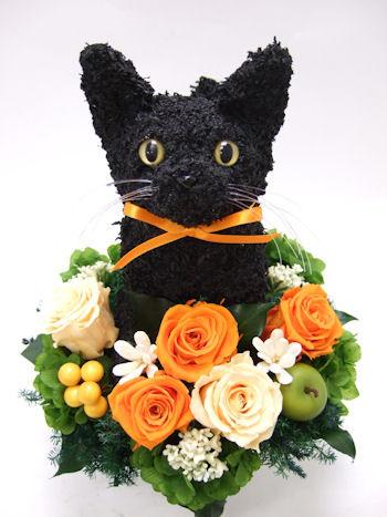 黒猫の花アレンジ