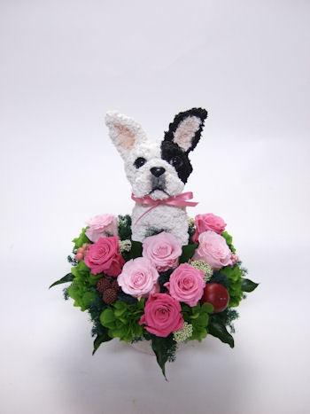 開店祝い 犬のトピアリー