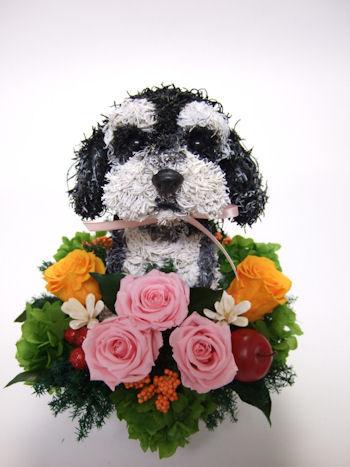 愛犬家のお母さんへプレゼント