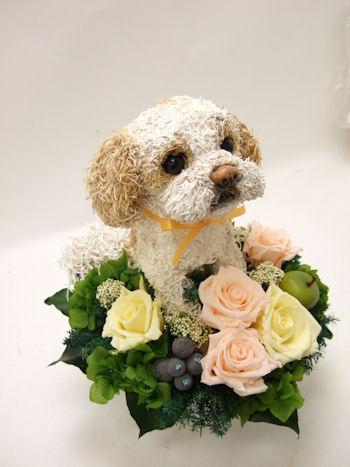 犬の花アレンジメント