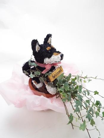 新築祝い 鉢植え犬