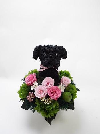黒パグ犬 プリザーブドフラワー