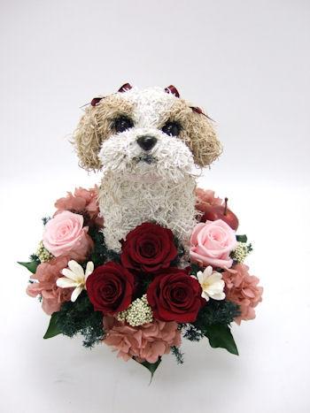 犬好きの誕生日プレゼント