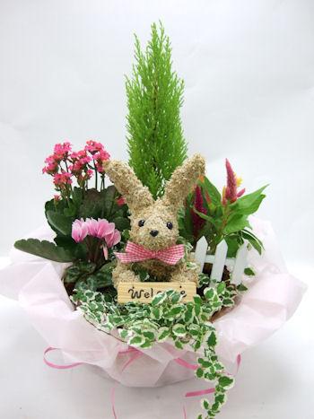 開店祝い ウサギのモストピアリー