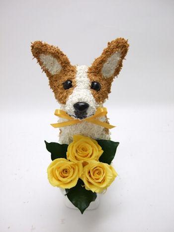コーギーのトピアリー犬の花ギフト