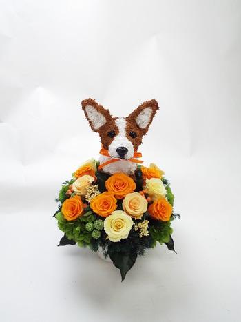 コーギー犬プリザーブドフラワーアレンジ