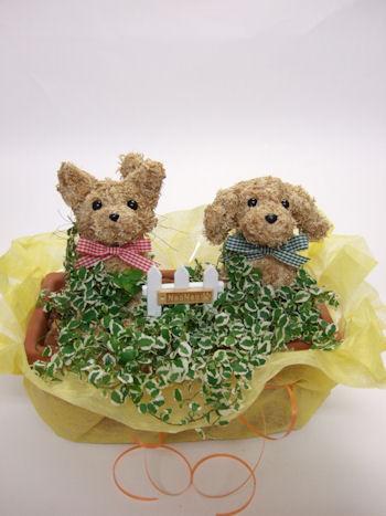 動物病院開院祝いの花