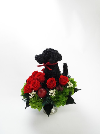 愛犬家 プレゼント