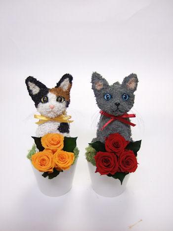 結婚式 猫