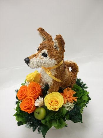犬の花ギフト