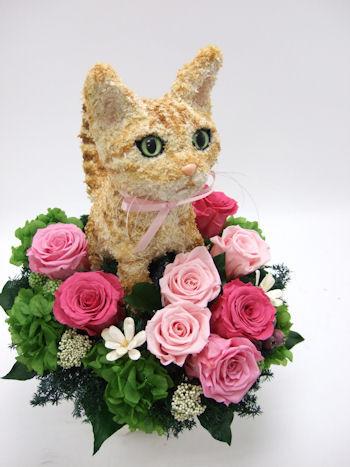 猫好きの人へ贈り物