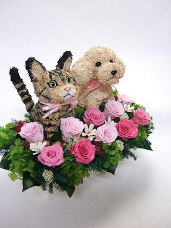 動物病院 開院祝い 花