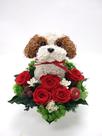 犬好きの人へお誕生日プレゼント
