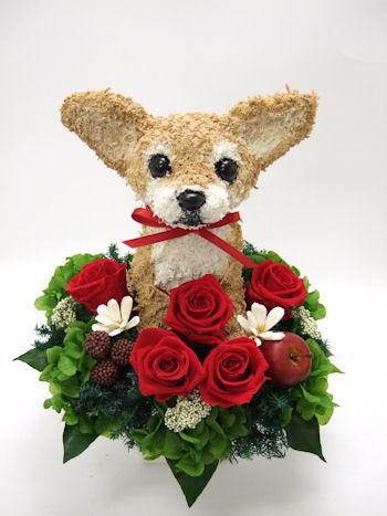 チワワ犬の花ギフト