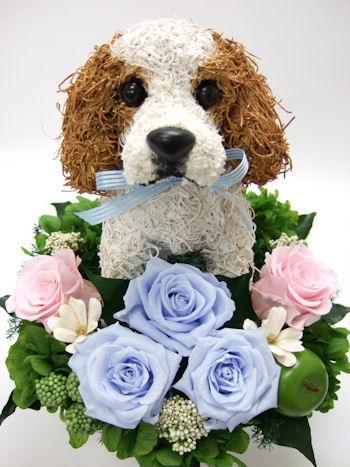 愛犬家へのプレゼント