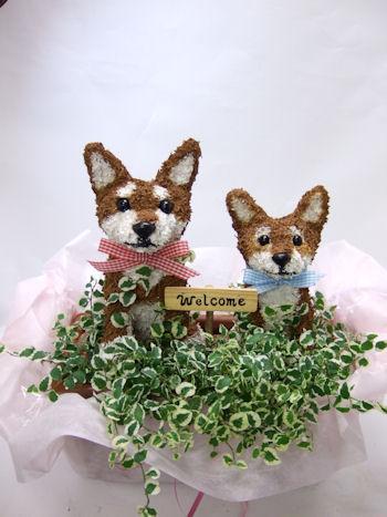 柴犬のトピアリー鉢植え