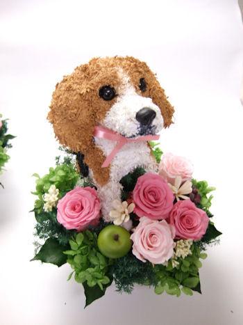 ビーグル犬のウェルカムドッグ