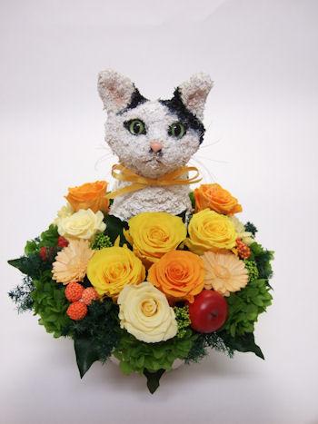 猫好き楽屋見舞いプリザーブドフラワーアレンジ