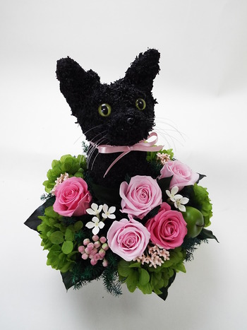 黒猫 プレゼント
