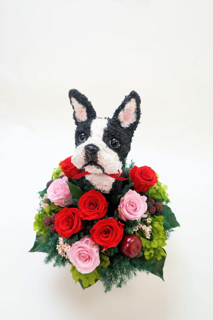 愛犬家へプレゼント