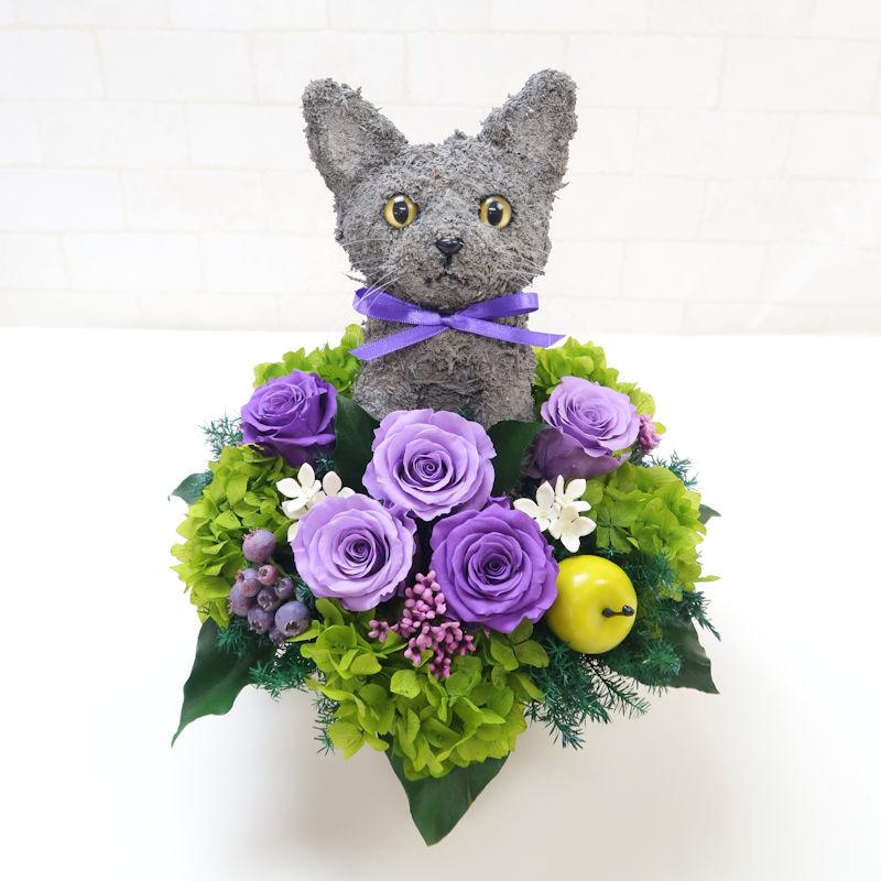 猫好きプレゼント 楽屋花