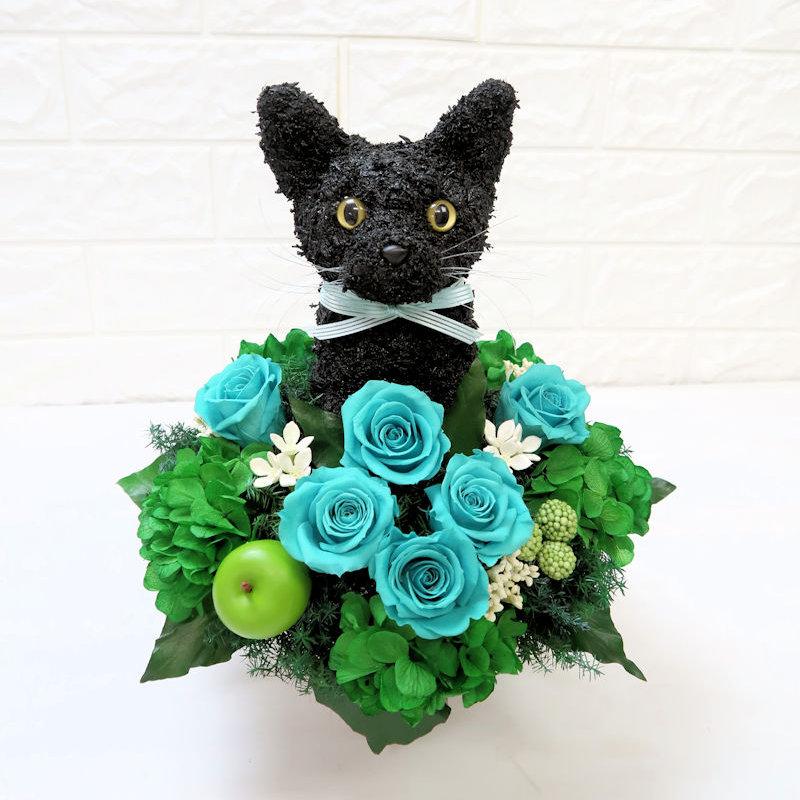 黒猫 楽屋花