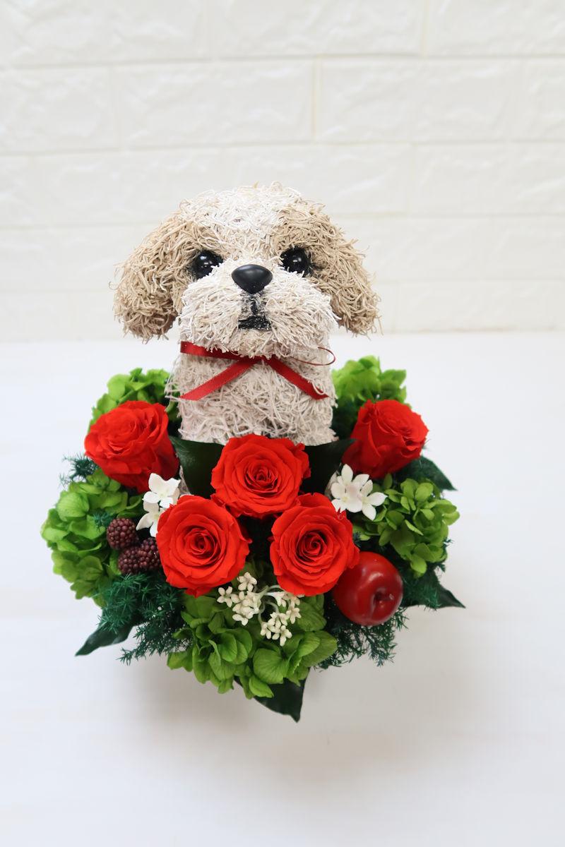 犬好きが喜ぶプレゼント