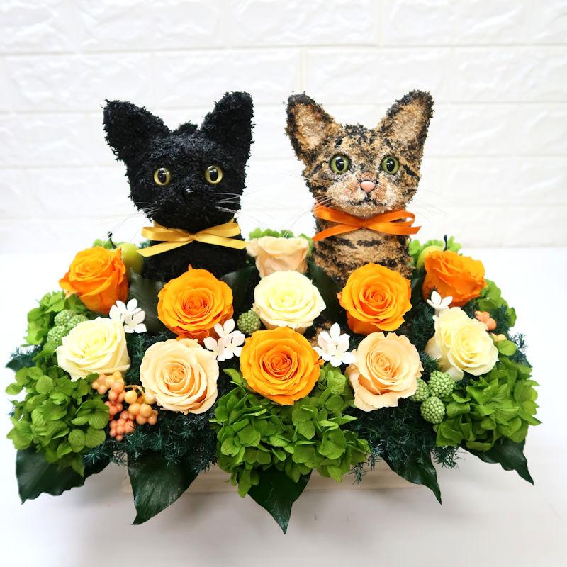 キジトラ猫 黒猫