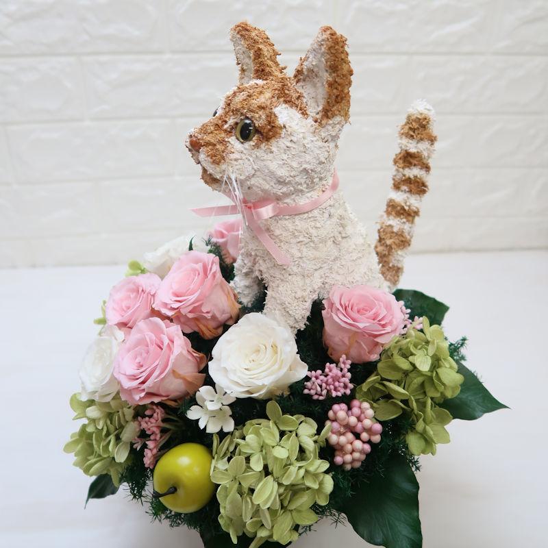楽屋花 猫好き