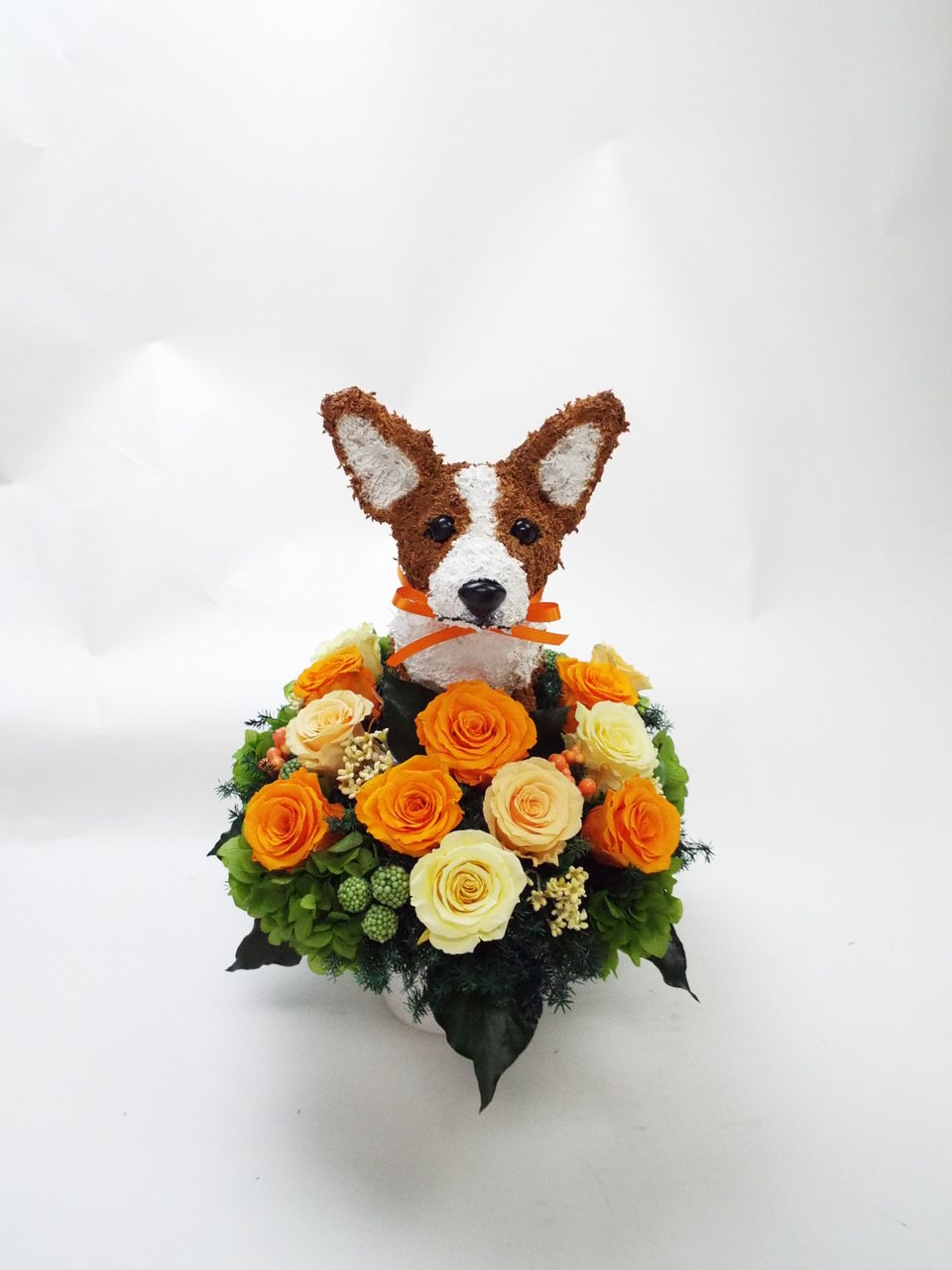 結婚祝い 犬