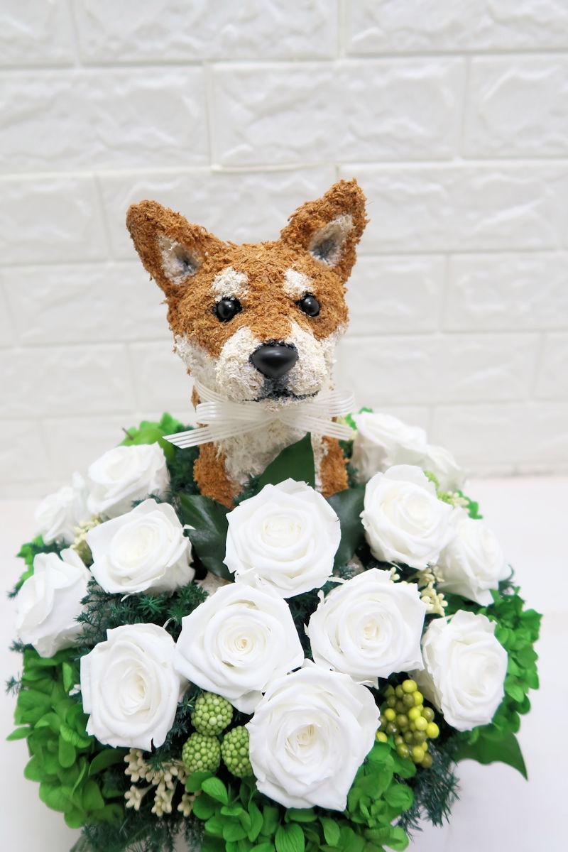 プリザーブドフラワー柴犬