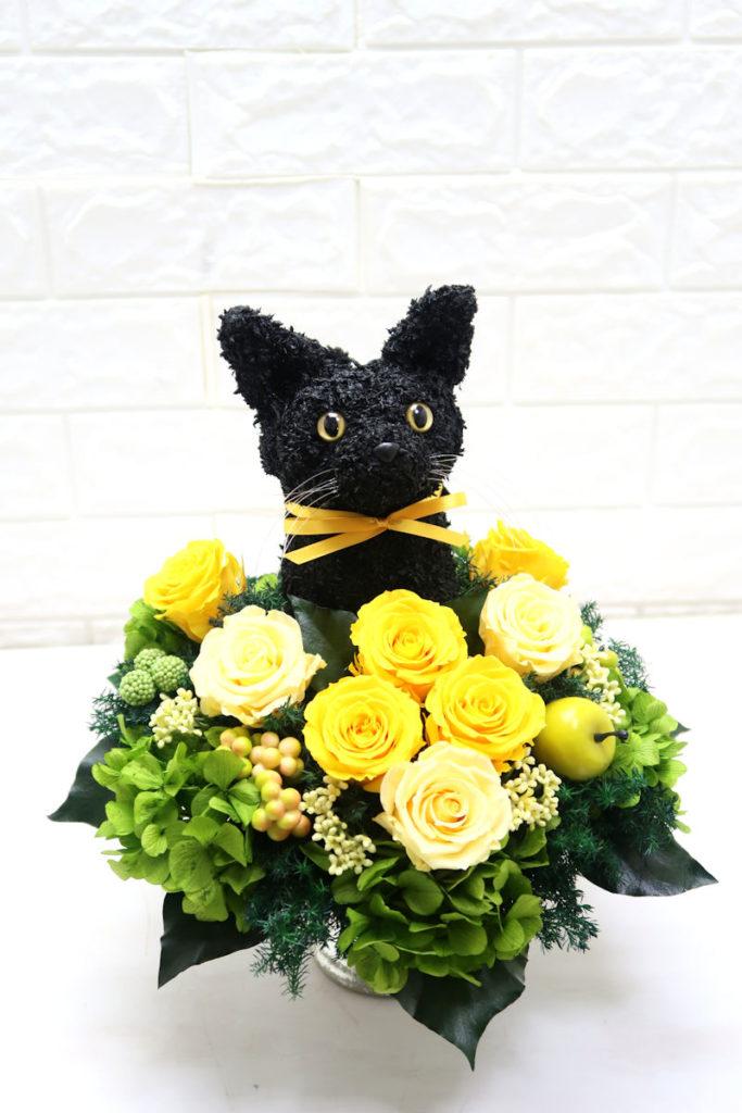 アニマルフラワー猫