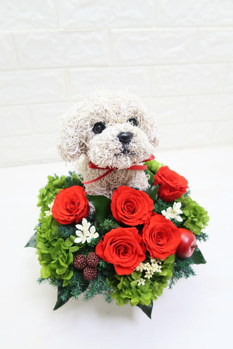 誕生日プレゼント犬好き